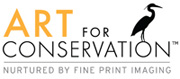 Art for Conservation