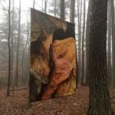 Degas Banner in Fog